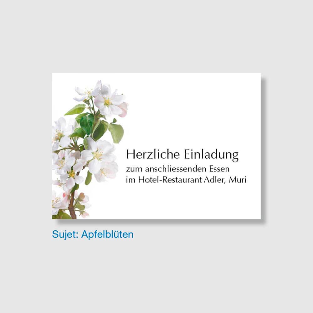 Muster Einladungskarte Sujet Apfelblüten