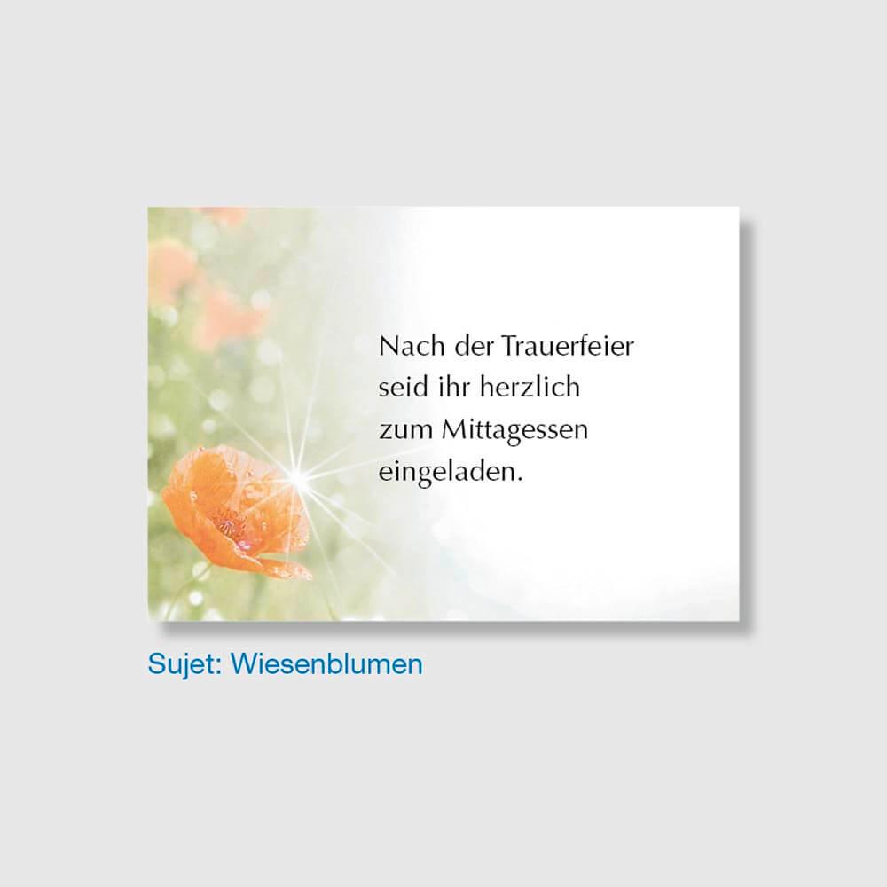Muster Einladungskarte Sujet Wiesenblumen