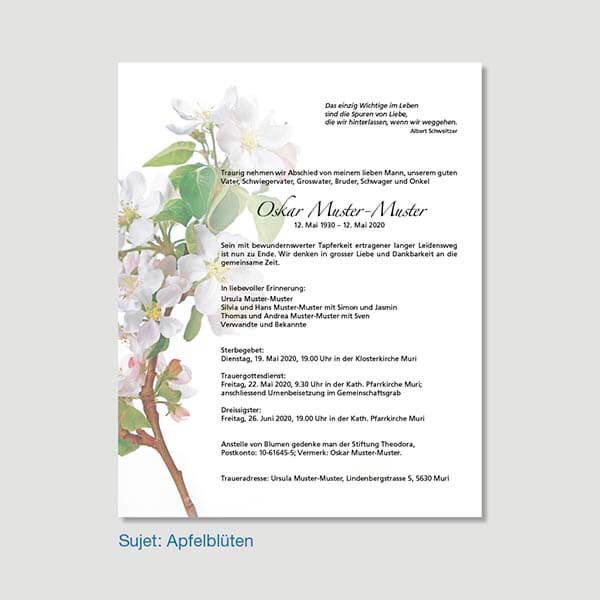 Muster Leidzirkular Sujet Apfelblüten