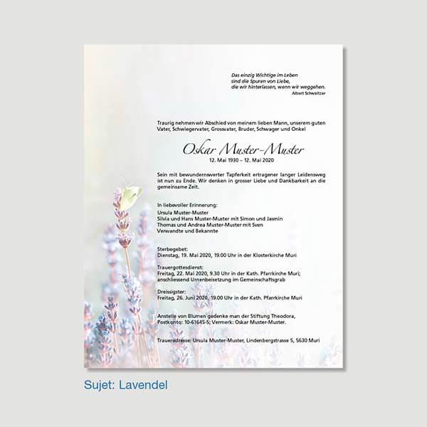 Muster Leidzirkular Sujet Lavendel